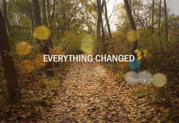 everything changed zsófi B