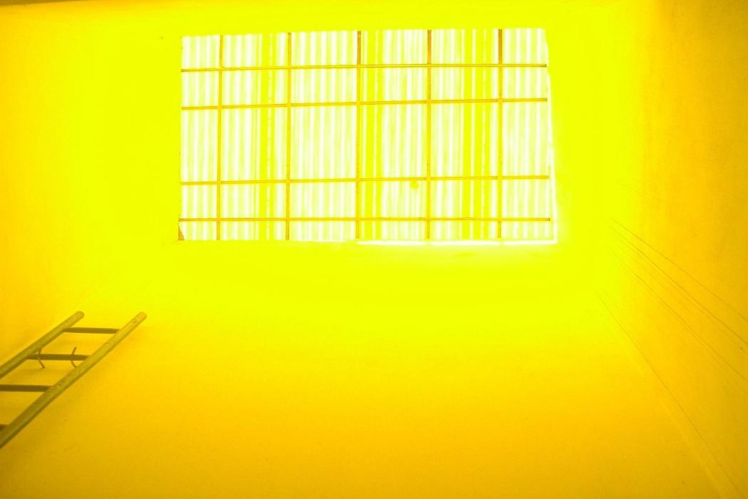 yellow Marchnwe